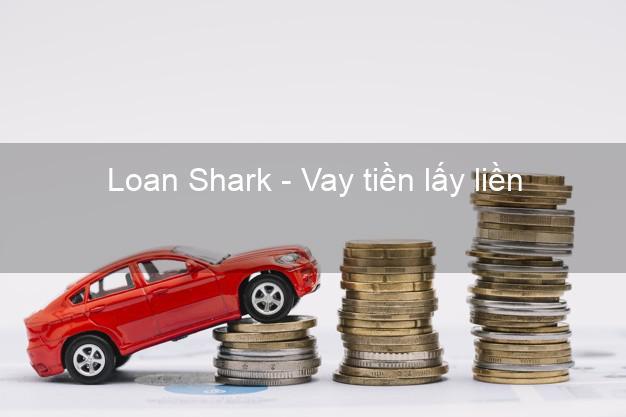 Loan Shark - Vay tiền lấy liền